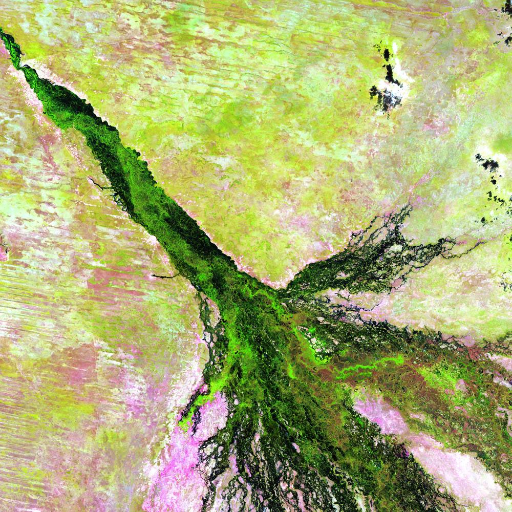 Река Окаванго Ботсвана