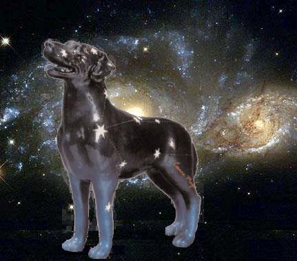 Созвездие Большой Пес