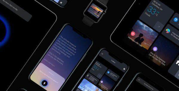 Направления развития рынка разработки мобильных приложений